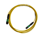Single Mode  MPO Trunk Patch Cords